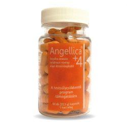 ANGELLICA +4 60db